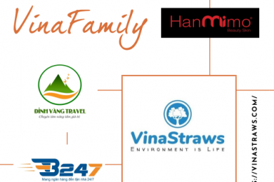 STRATEGIC PARTNERS OF VINASTRAWS